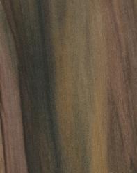 rainbow poplar sample