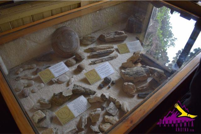 Piezas del museo en una vitrina