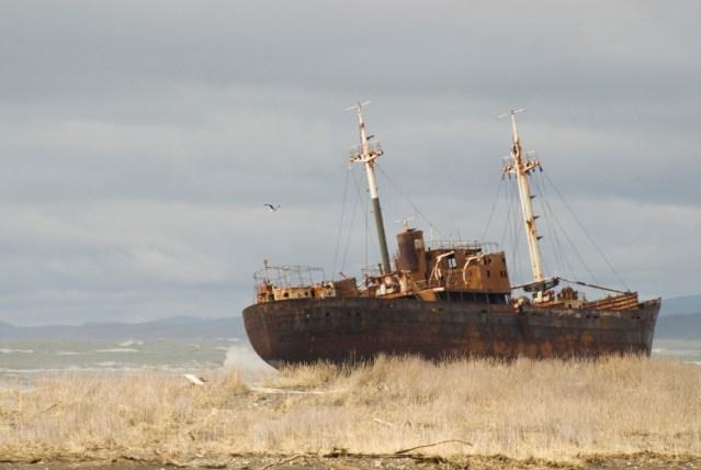 Barco abandonado, observatorio de aves.