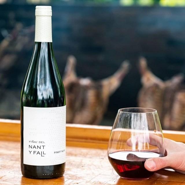 Botella y copa con vino patagónico, pinot noir.