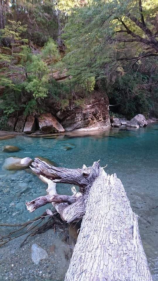 El Bolsón. Patagonia Argentina - Confluencia Río Azul y Blanco