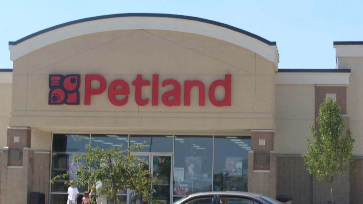 New Pet Store Opens Feb. 16 in Summerville | Summerville ...