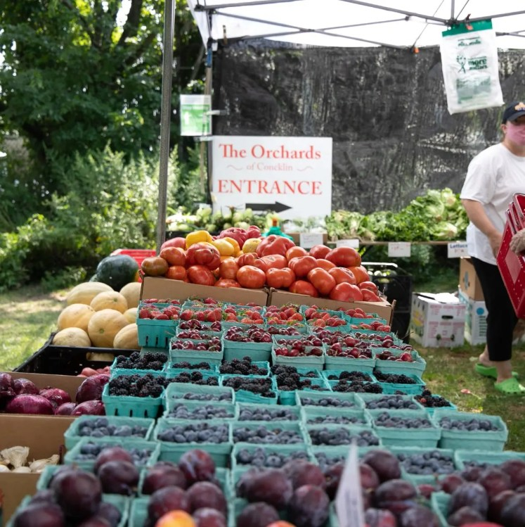 Piermont's Farmers Market on The Hudson