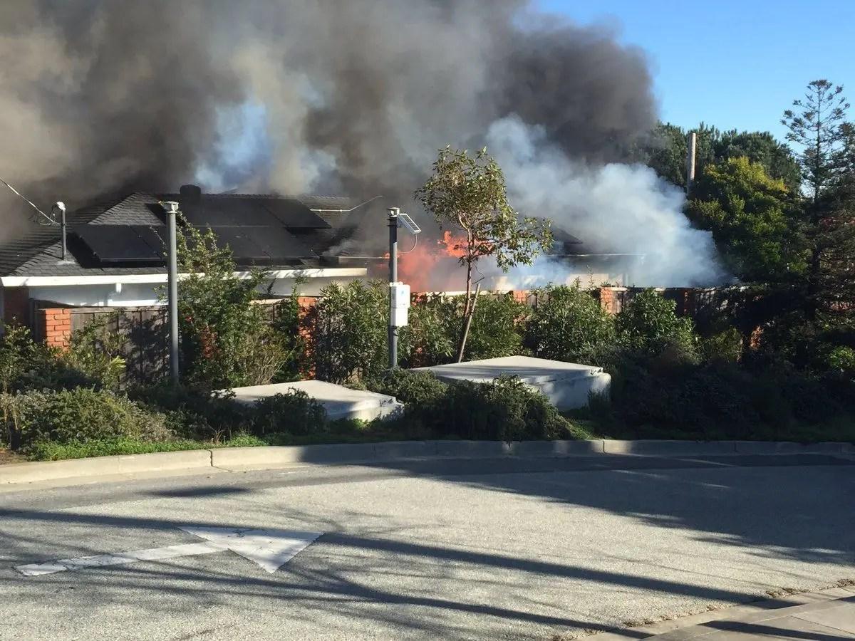 Man Injured 3 Dogs Killed In Belmont House Fire Belmont