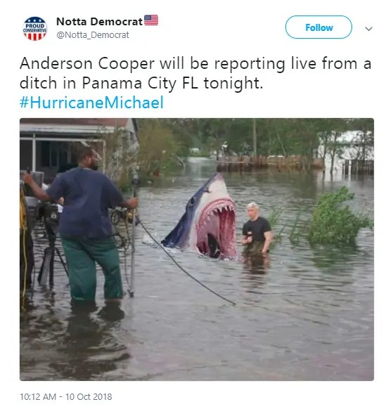 Hurricane Michael Causes A Flood Of Storm Footage Memes Online
