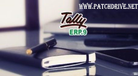 Tally ERP 9 (Accounting Software)