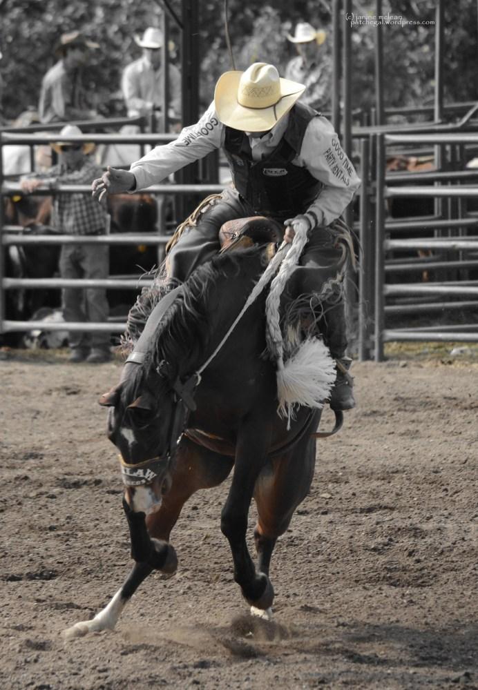 Cowboy (or Girl) up (2/6)