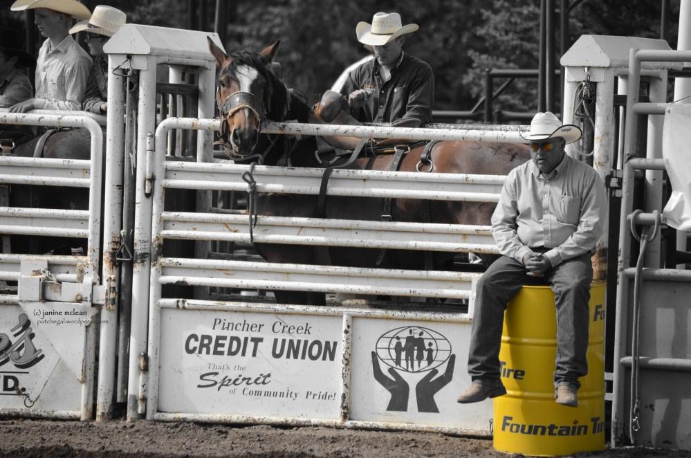 Cowboy (or Girl) up (6/6)