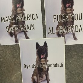 This dog is a hero! (3) pack