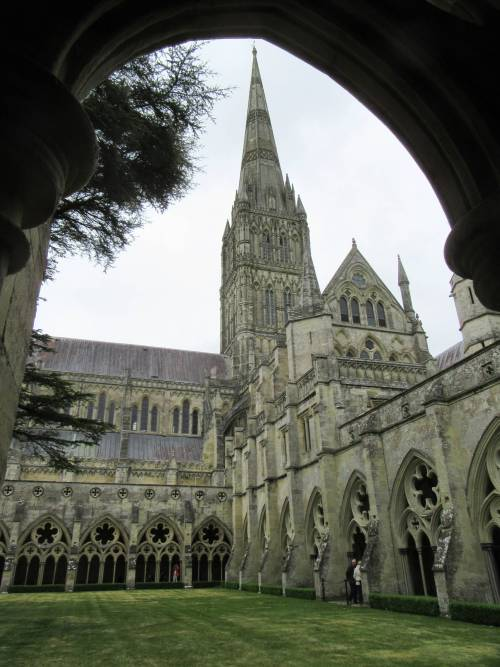 Salisbury Cathedral spire from the cloisters by Allison Reid