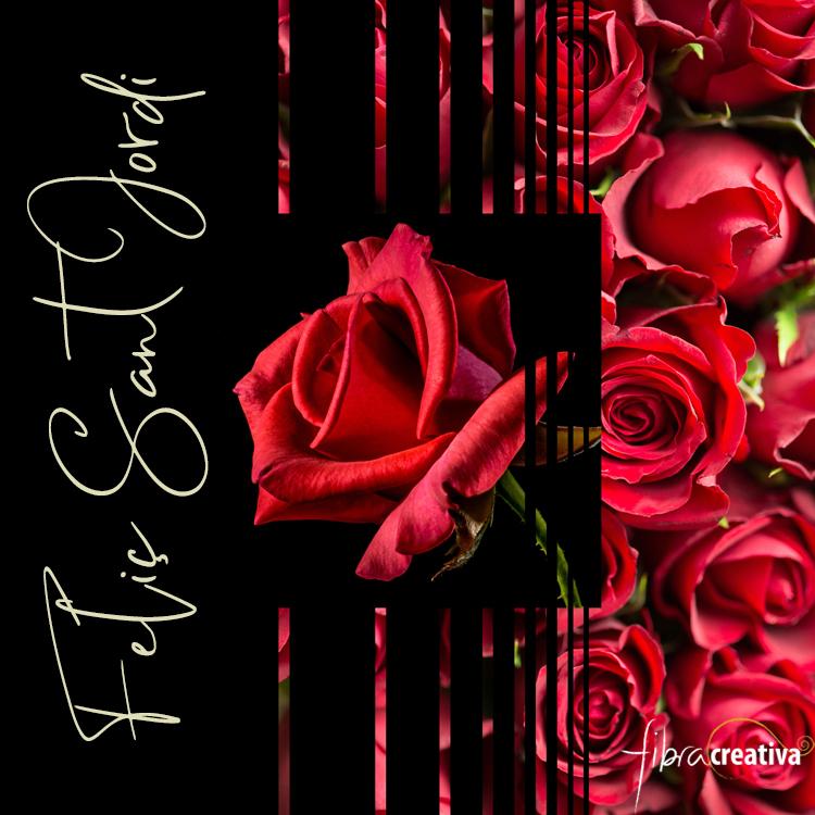 rosas rojas Feliç Sant Jordi