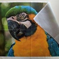 2 maneras de imprimir sobre tela fotos e imagenes