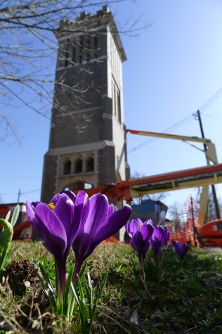 crocus and construction
