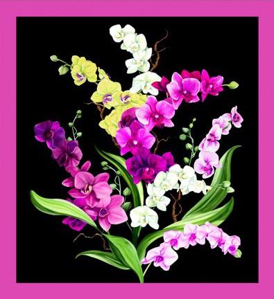 Orchid Fancy Panel Y2945-3 Black