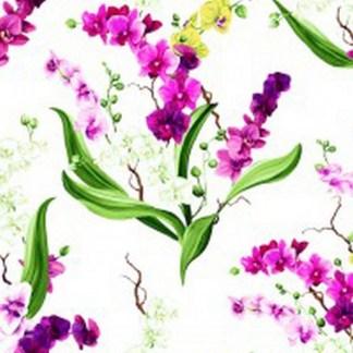 Orchid Fancy Y2946-1 White
