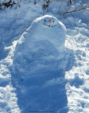 Mr. Snowy