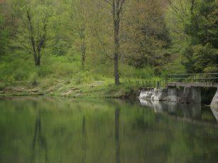 Science Lake, Allegany State Park