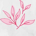 Hojas del logotipo