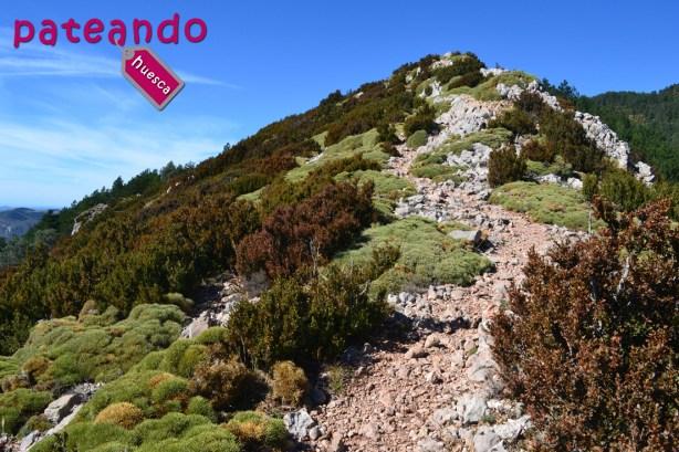 Cresta en la Sierra de Loarre
