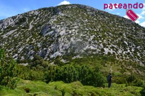 Pico Borón