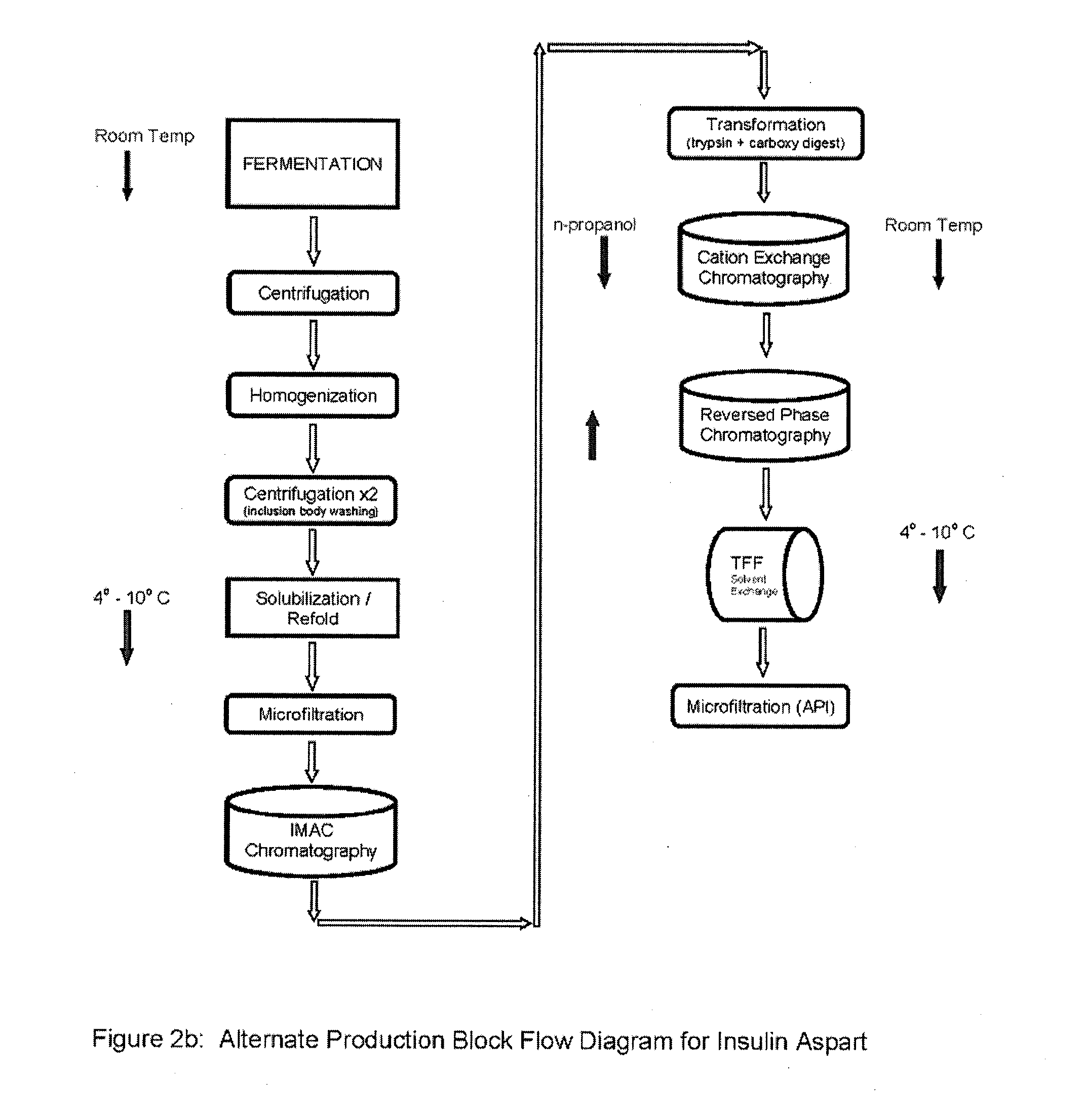 Insulin Diagrams Printable Injection Sites