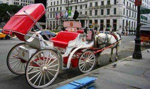 Philadelphia Carriage Ride