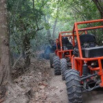 Driving an ATV in the jungle