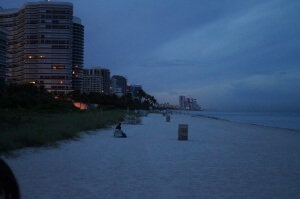 Beach in Miami at Dusk