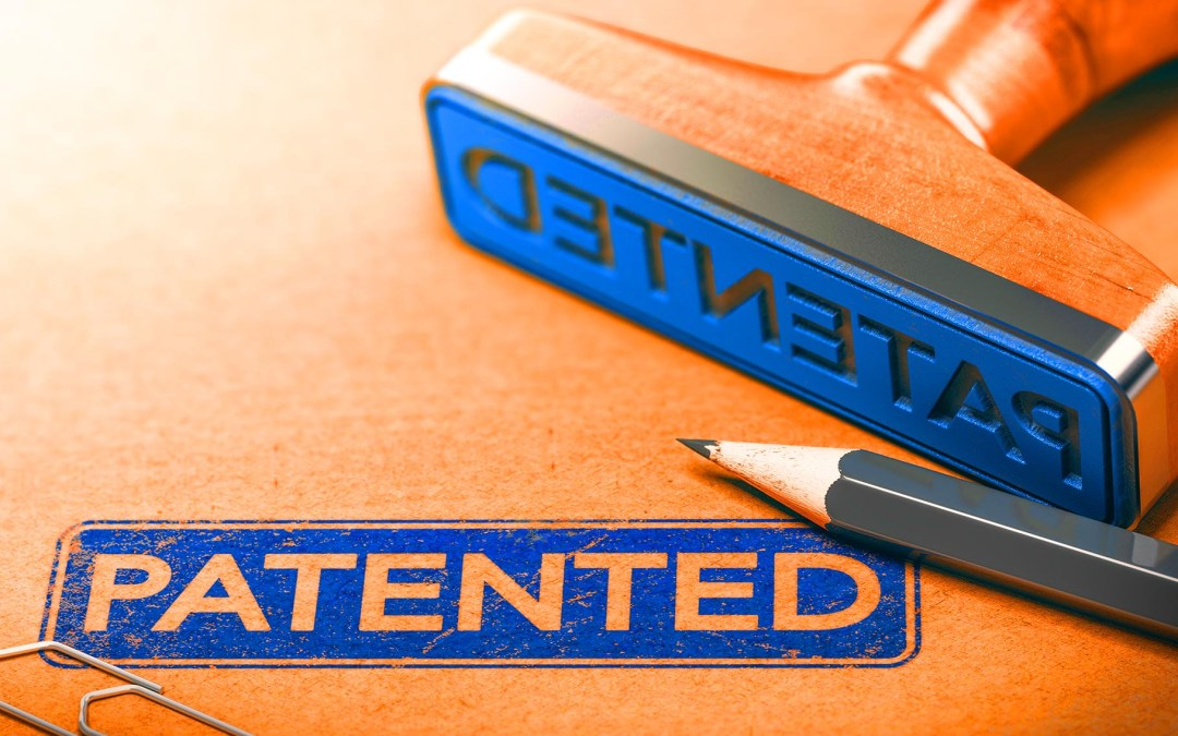 What Does Patent Grant Mean?
