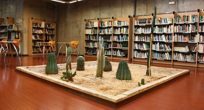 Biblioteca de la Cova Gran