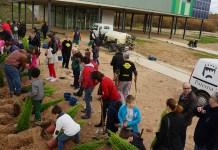 Un centenar de personas se acercaron al Parque Central para disfrutar del Día del Árbol de Multipaterna