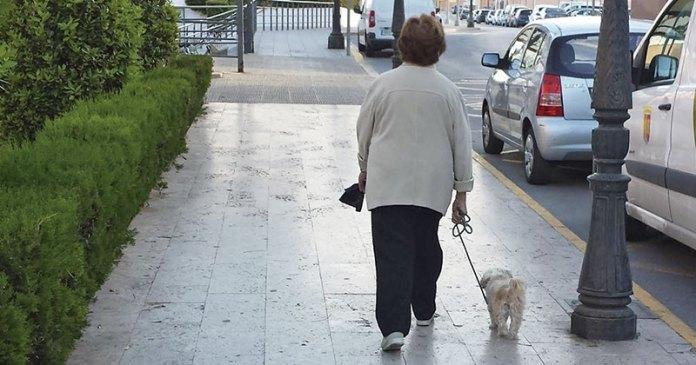 Una señora pasea a su perro en Paterna