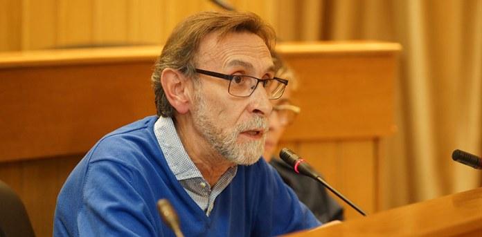 Vicente Sales durante un pleno