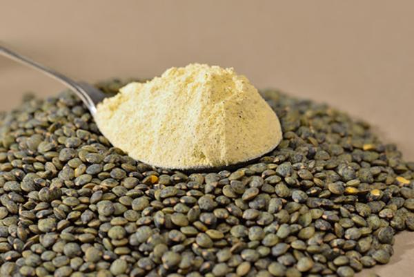 Banogne-Recouvrance (08) : farine de lentilles vertes en agriculture biologique