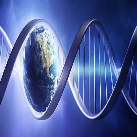 Reiki ADN