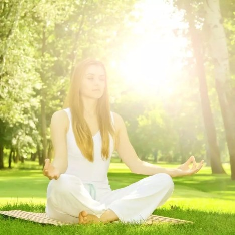 meditating lotus