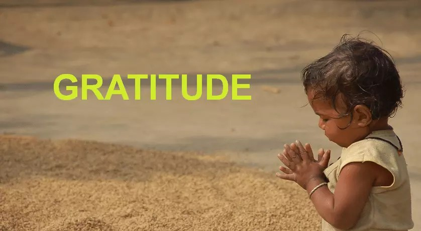 La gratitude : un exercice contre le stress