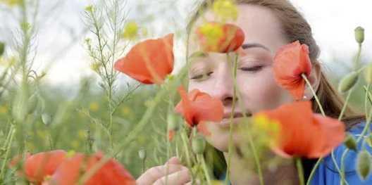 Les plantes présentent les mêmes sens que les humains
