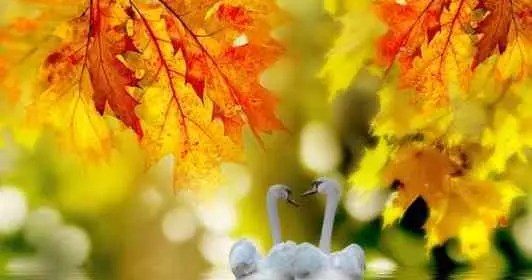 Octobre : Révélations