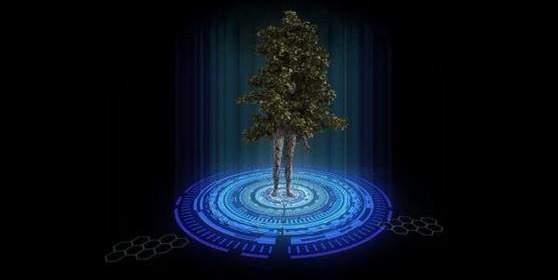 Réalisez Le Contact Avec Nos Dimensions De Lumière