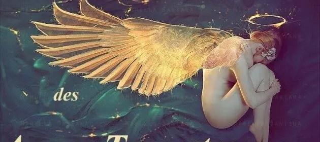 ange sur terre