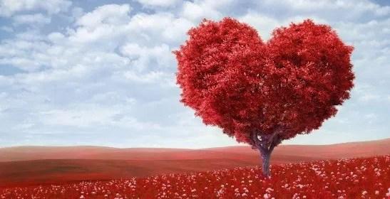 pensée du jour amour