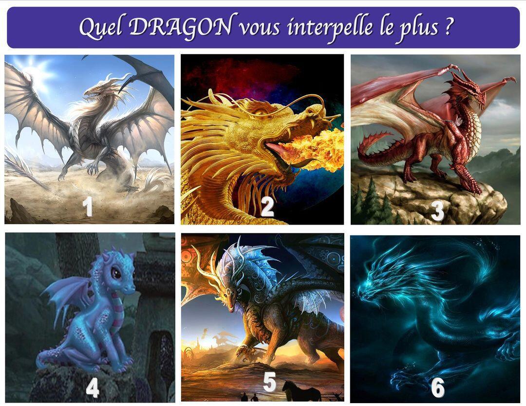 QUEL DRAGON VOUS INTERPELLE LE PLUS ?