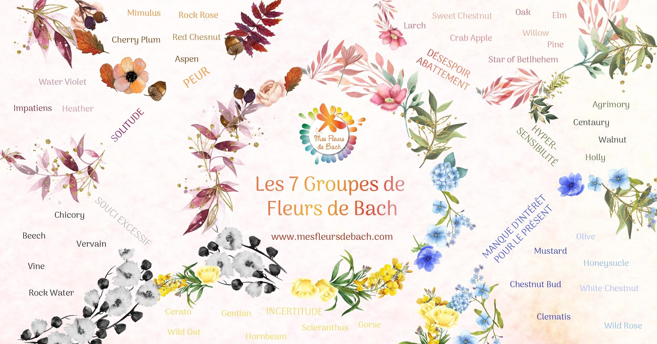 Traverser l'année en douceur avec les fleurs de Bach