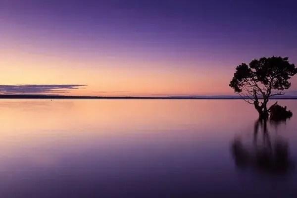 ciel violet
