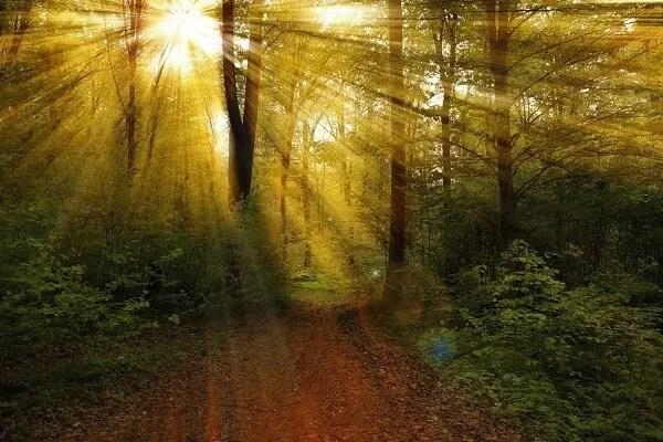 lumiere divine
