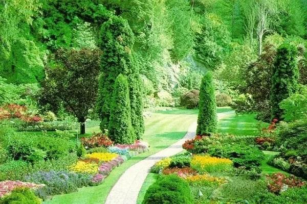 Planter le jardin de votre âme