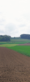 Farm Land Real Estate Appraiser Service