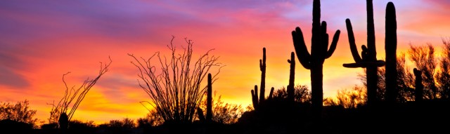 arizona-sunset-recovery