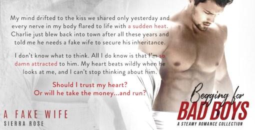 A Fake Wife – Sierra Rose